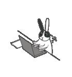 パンダウサギちゃん2