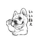 表情豊かな犬たち(個別スタンプ:01)
