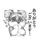 表情豊かな犬たち(個別スタンプ:05)