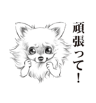表情豊かな犬たち(個別スタンプ:10)