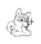 表情豊かな犬たち(個別スタンプ:15)