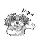 表情豊かな犬たち(個別スタンプ:19)