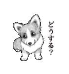 表情豊かな犬たち(個別スタンプ:27)