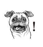 表情豊かな犬たち(個別スタンプ:29)