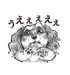 表情豊かな犬たち(個別スタンプ:31)