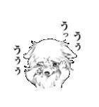 表情豊かな犬たち(個別スタンプ:33)