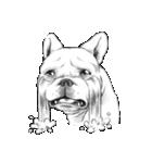 表情豊かな犬たち(個別スタンプ:34)