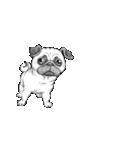 表情豊かな犬たち(個別スタンプ:39)