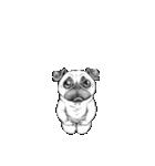 表情豊かな犬たち(個別スタンプ:40)