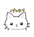 猫ピッチャー(個別スタンプ:29)