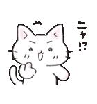 猫ピッチャー(個別スタンプ:36)
