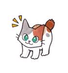 いつものネコたち(個別スタンプ:12)