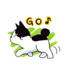 いつものネコたち(個別スタンプ:13)