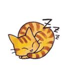 いつものネコたち(個別スタンプ:25)
