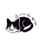 いつものネコたち(個別スタンプ:26)