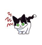 いつものネコたち(個別スタンプ:28)