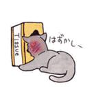 いつものネコたち(個別スタンプ:35)