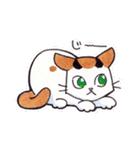 いつものネコたち(個別スタンプ:37)