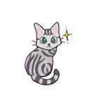 いつものネコたち(個別スタンプ:40)
