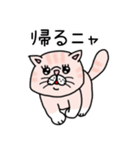エキゾチックにゃんこ☆(個別スタンプ:35)