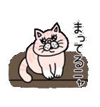エキゾチックにゃんこ☆(個別スタンプ:40)