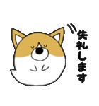 おばけコーギー【敬語】(個別スタンプ:06)