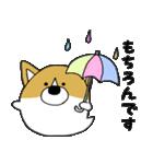おばけコーギー【敬語】(個別スタンプ:36)