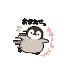 ほのぼの子ペンギン連絡用(個別スタンプ:20)