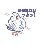 錦花鳥のチョーちゃんⅡ(個別スタンプ:16)
