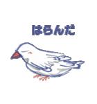 錦花鳥のチョーちゃんⅡ(個別スタンプ:17)