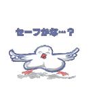 錦花鳥のチョーちゃんⅡ(個別スタンプ:28)