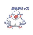 錦花鳥のチョーちゃんⅡ(個別スタンプ:38)