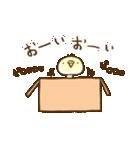 インコ気まぐれ ひな祭り(個別スタンプ:03)