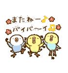 インコ気まぐれ ひな祭り(個別スタンプ:40)