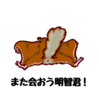 モモンガもんがまえ!(個別スタンプ:16)