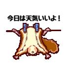 モモンガもんがまえ!(個別スタンプ:18)