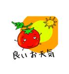 ミニトマトと一緒に天気。一緒に会話。(個別スタンプ:01)