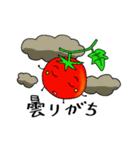 ミニトマトと一緒に天気。一緒に会話。(個別スタンプ:05)