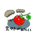 ミニトマトと一緒に天気。一緒に会話。(個別スタンプ:13)