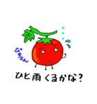 ミニトマトと一緒に天気。一緒に会話。(個別スタンプ:14)