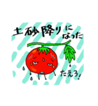 ミニトマトと一緒に天気。一緒に会話。(個別スタンプ:16)