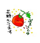 ミニトマトと一緒に天気。一緒に会話。(個別スタンプ:32)