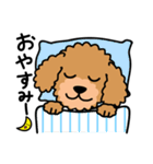 Cute! トイプードルスタンプ(個別スタンプ:03)