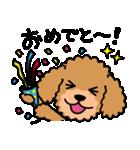 Cute! トイプードルスタンプ(個別スタンプ:05)