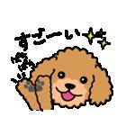 Cute! トイプードルスタンプ(個別スタンプ:09)