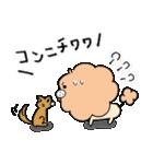 毛だら犬(個別スタンプ:13)