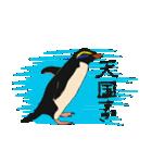 クールでニヒルなあいつはイワトビペンギン(個別スタンプ:9)