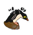 クールでニヒルなあいつはイワトビペンギン(個別スタンプ:11)