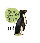クールでニヒルなあいつはイワトビペンギン(個別スタンプ:19)