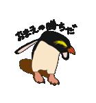 クールでニヒルなあいつはイワトビペンギン(個別スタンプ:39)